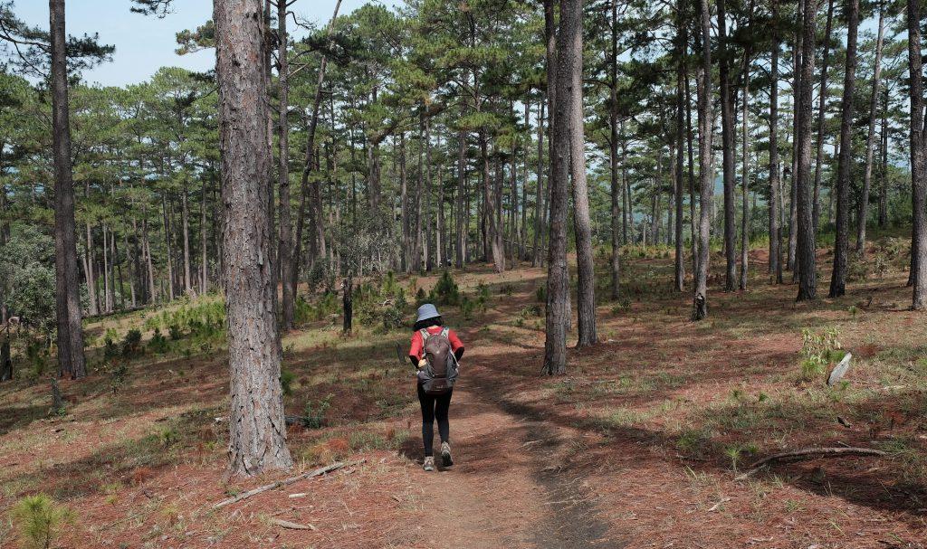 Công viên quốc gia núi Bidoup