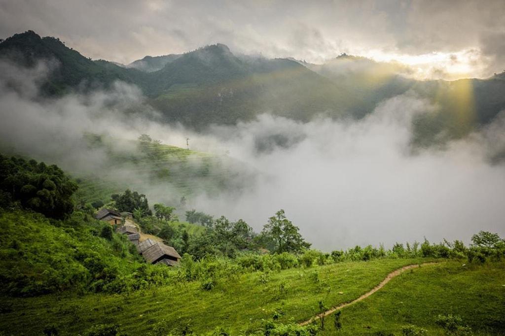 """Sự hòa quyện """"mây"""" và """"hoa"""" trên núi Tà Chì Nhù"""
