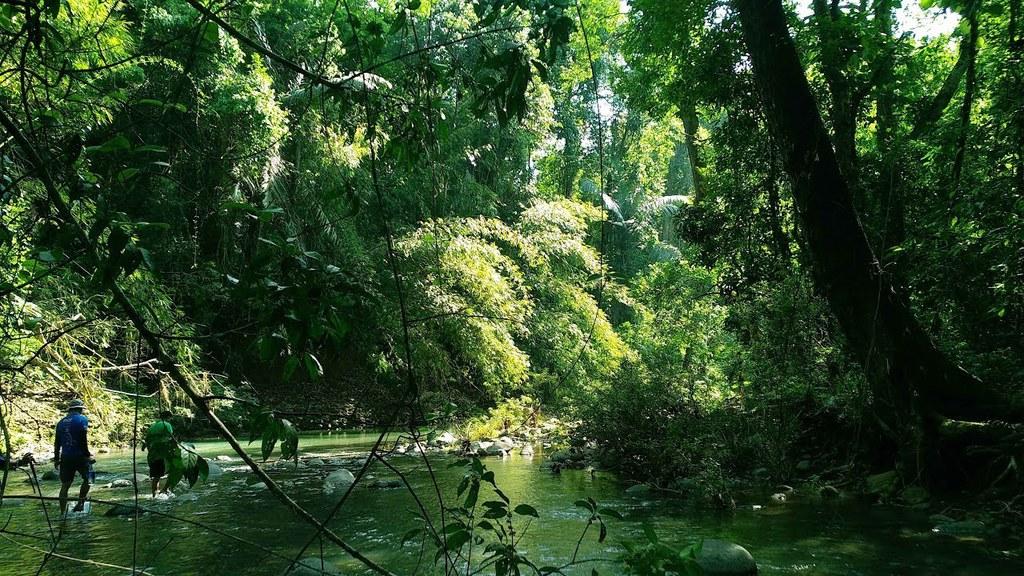 Vẻ đẹp hoang sơ của rừng Bù Gia Mập
