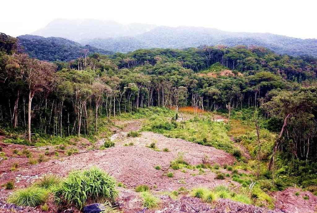Khám phá thiên nhiên ở vườn quốc gia Bidoup