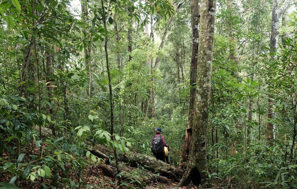 Khám phá công viên quốc gia núi Bidoup