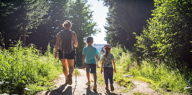 Kinh nghiệm trekking rừng siêu chi tiết