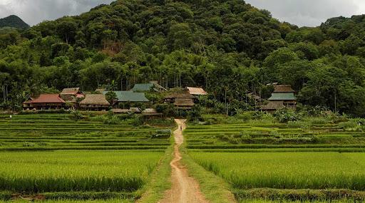 Khám phá khu bảo tồn thiên nhiên Pù Luông