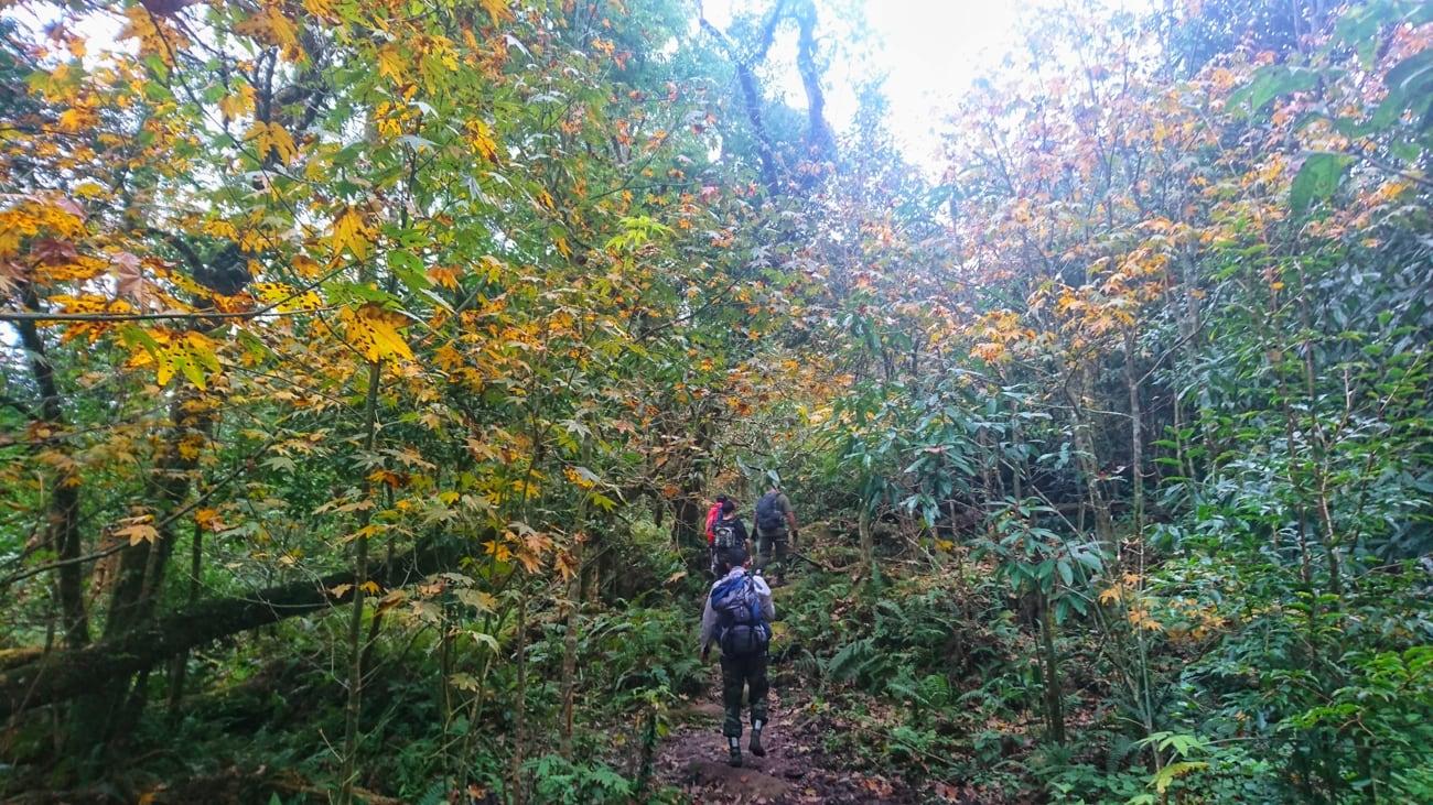 Tour trekking leo núi chinh phục và khám phá Tả Liên