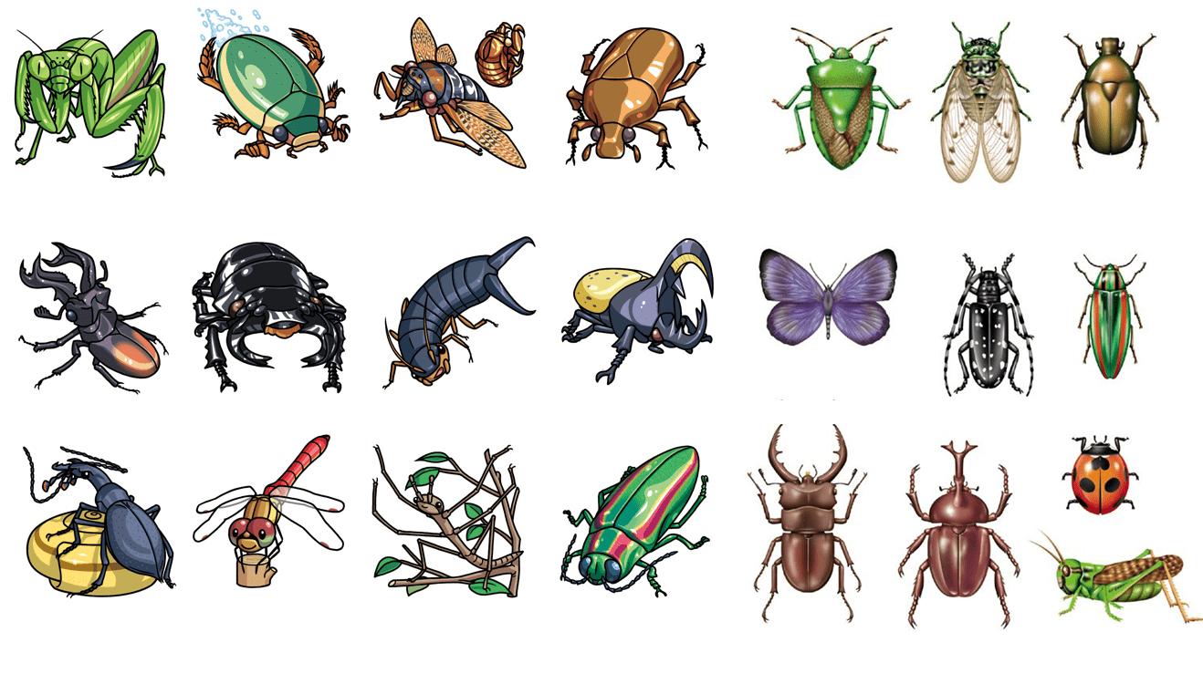 Hướng dẫn lựa chọn thuốc chống côn trùng khi đi