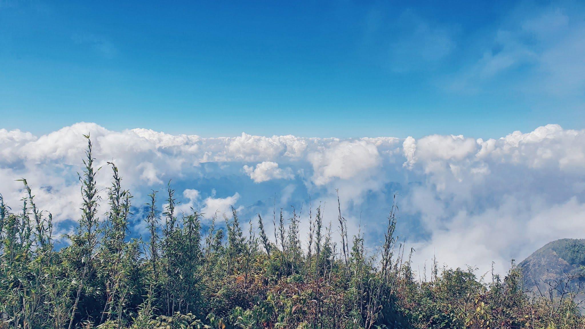 Hành trình tour chinh phục Bạch Mộc Lương Tử săn mây.