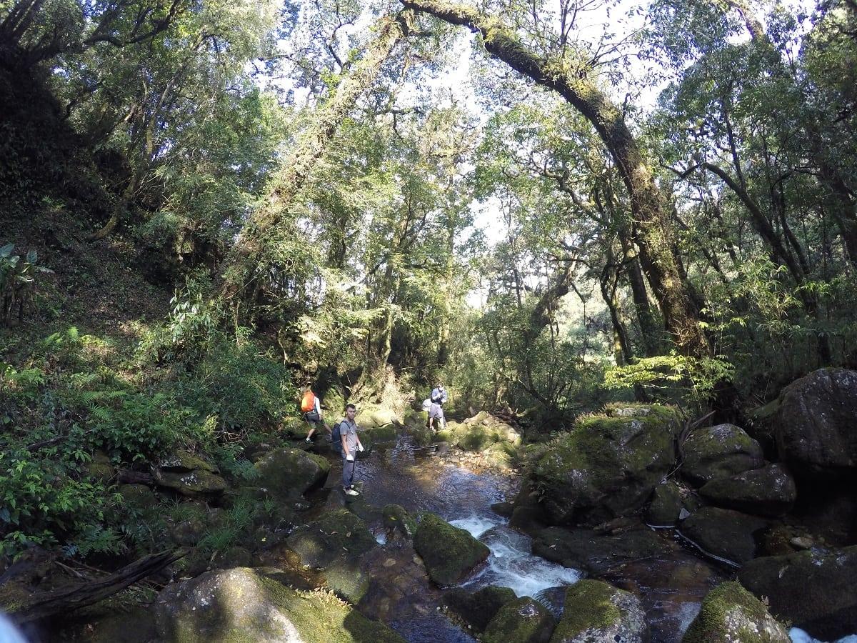 Tour trekking leo núi chinh phục và khám phá Putaleng