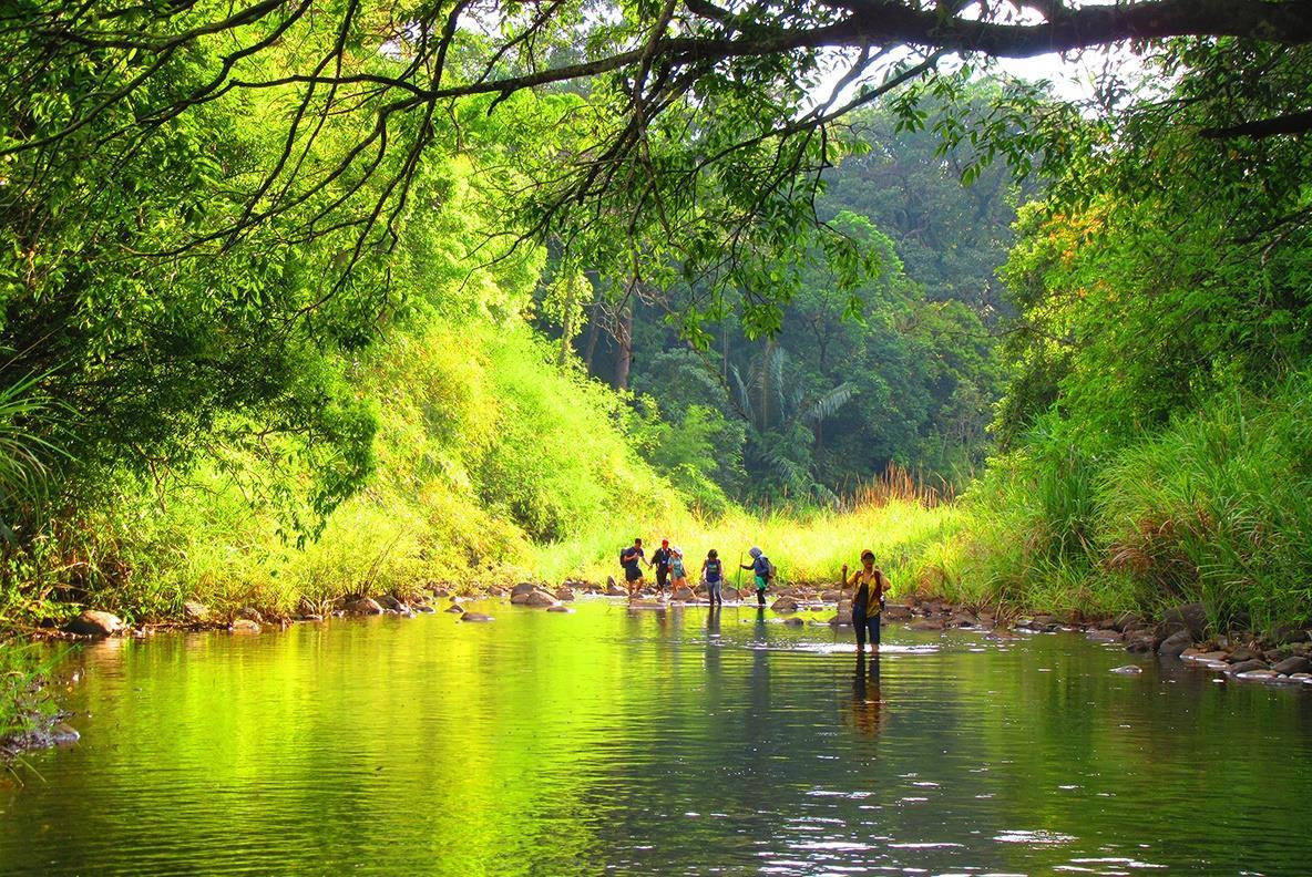 Tour trekking chinh phục khám phá Vườn quốc gia Bù Gia Mập