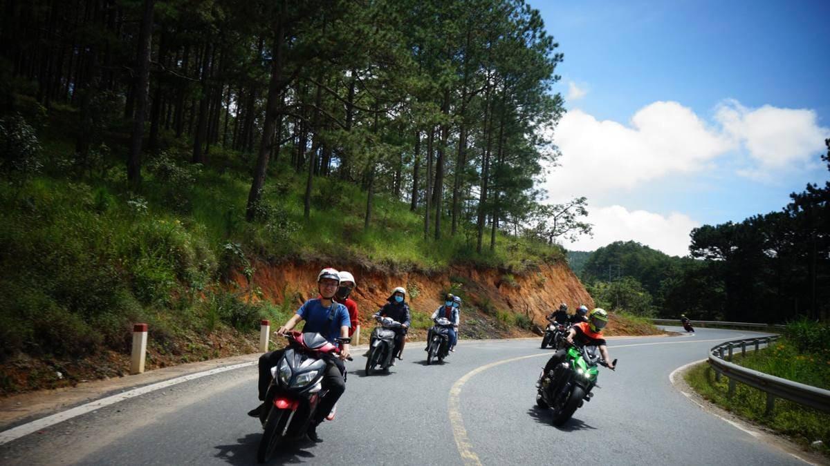 Khám phá núi Voi - địa điểm dã ngoại lý tưởng ở Đà Lạt