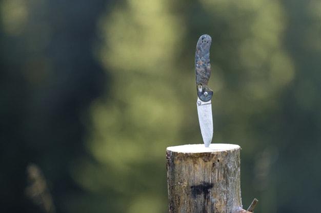 dao đi rừng