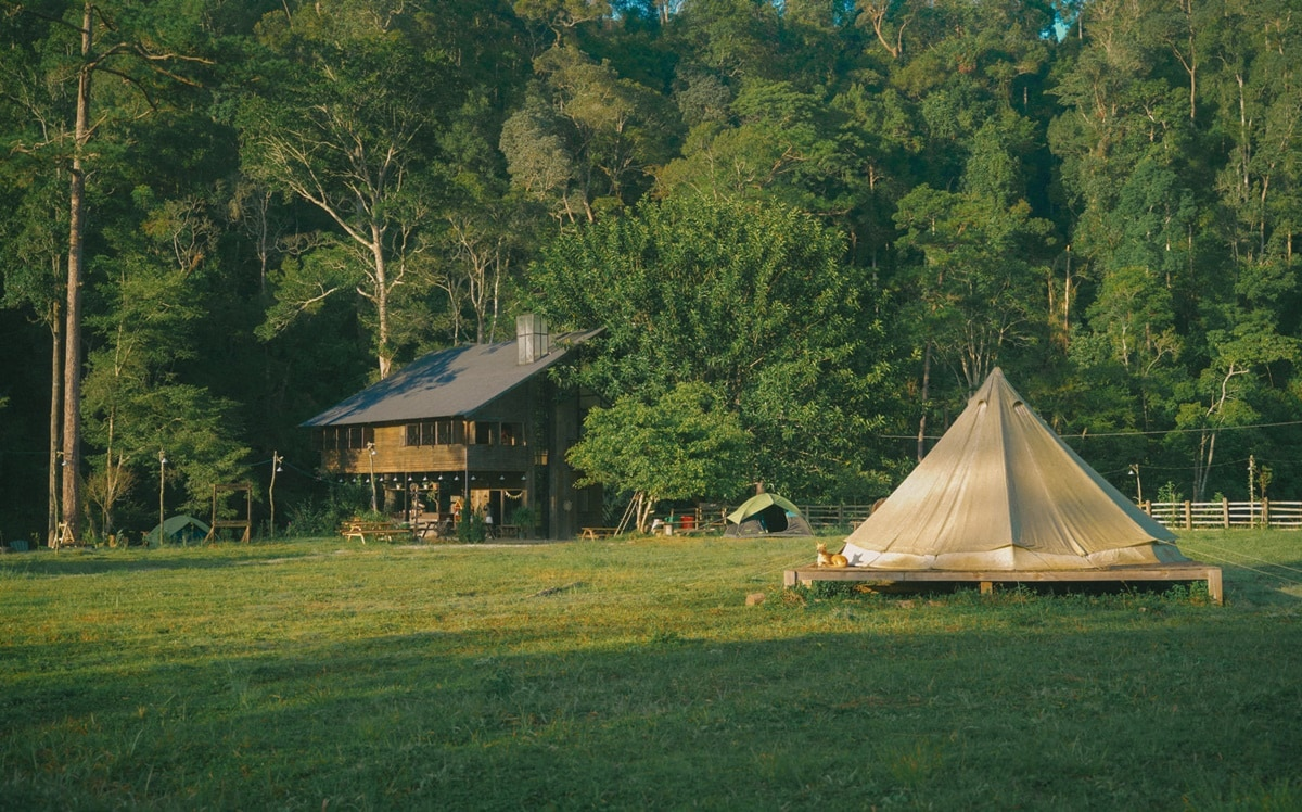 Kinh nghiệm cắm trại Đà Lạt chi tiết từ A-Z
